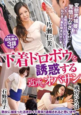 VNDS-3228 studio Star Paradise - Nearby Olusegun To Seduce The Underwear Thief