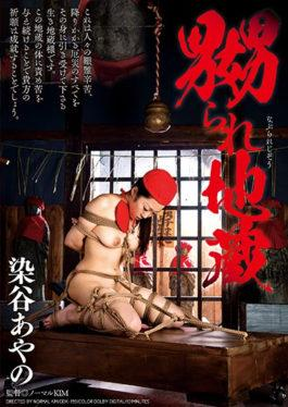 DDK-159 studio Dogma - Ayano Tsuyoshi