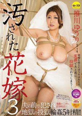 CESD-480 - The Stained Bride 3 Norikawa Hikawa - Serebu No Tomo