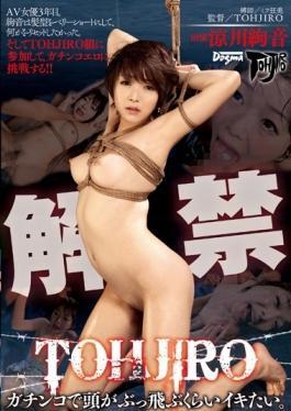 DDT-533 - I Want Iki Much Head Fly Bukkake Economy Air TOHJIRO Gachinko. Ryokawa Ayaka - Dogma