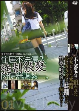 M-2078 Schoolgirl Cattle - Violation Collection