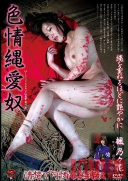 ADVO-082 Studio Art Video SM / Mousouzoku Naughty Bondage Love Slave Nonoka Kaede