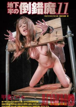 ADVO-044 Studio Art Video SM / Mousouzoku Pervert in the Dungeon 11 Miharu Kai