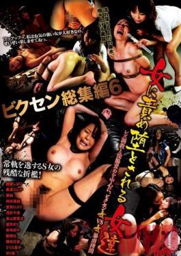 CMV-067 Studio Cinemagic Vixen Complete Collection 6 - Girls Who Fall For Lesbian Torture
