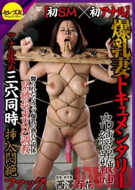 CETD-148 Studio Celeb no Tomo First BDSM x First Anal Sex. The Documentary Of The Wife With Colossal Tits. Tied Up Hung NosehookedWhipped And Groaning. Momoka Nishizawa