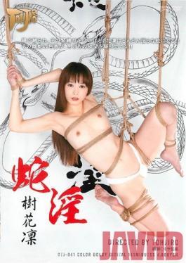 GTJ-041 Studio Dogma Serpent Lust Karin Itsuki