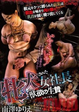 CMC-175 Studio Cinemagic The Lady Boss Is Turned Into A Domesticated Bitch The Lustful Sacrifice Yurie Minamizawa