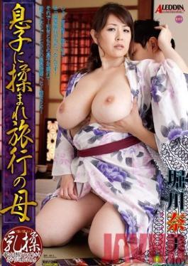 SPRD-624 Studio Takara Eizo Mother Rubbed by Her Son on Family Trip - Nami Horikawa