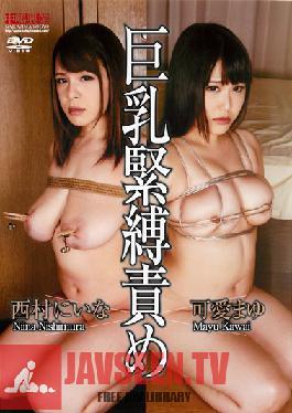 NBD-071 Studio Nakajima Kogyo Big Tits S&M Teasing