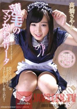 KCPN-055 Studio CREAM PIE Really Cute Lolita Without Much Hair Sayaka Takahashi