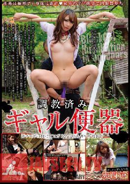 SORA-090 Studio Yama to Sora Broken In - Gal Toilet Ryo Akanishi