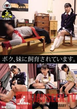 OYC-243 Studio Oyashoku Company - I'm Being Trained By My Little Sister