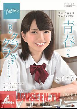SDAB-102 Studio SOD Create - Youth Is So Dazzling!! Chiharu Sakurai SOD Actress Porn Debut