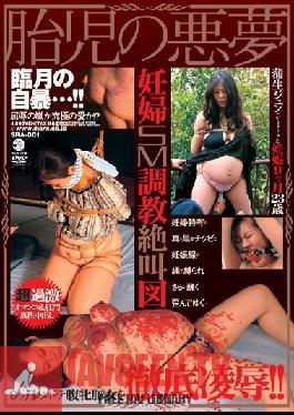 SRA-001 Studio MARX Foetus Nightmare Jun Gamo
