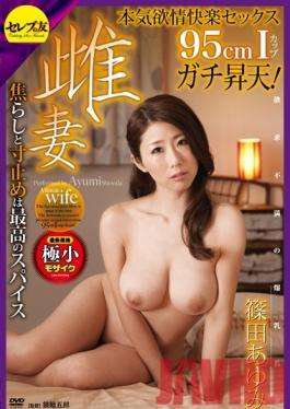 CETD-223 Studio Celeb no Tomo 95cm Bust-Sized Ayumi Shinoda's Lust Filled Ultimate Pull Out Wife Fuck!