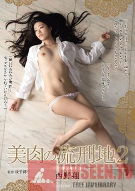 RBD-702 Studio Attackers Prison of Beautiful Flesh: Shou Nishino