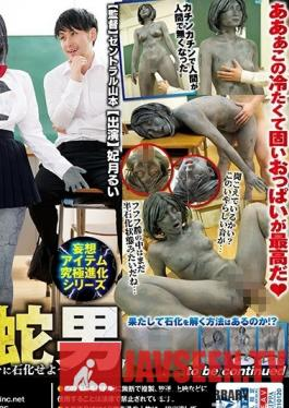 RCTS-016 The Daydream Item Ultimate Evolution Series This Exchange S*****t Is A Fossil Snake Man - I Command The Girls In Class To Become Fossils - Rui Hizuki