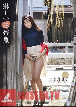 TSDS-46025 Lonely tropical fish Mariko Miyoshi