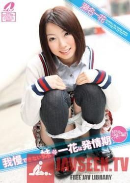 XV-1013 Little Sister Can't Hold Back Ichika in Puberty Ichika Sena