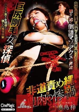 CMF-055 A Female Detective With Big Tits And A Hairy Pussy - Outrageous Bondage - Azusa Majima