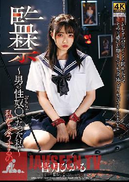 DDHH-020 Confinement - I Became A Man's Sex Toy - Hikaru Minazuki
