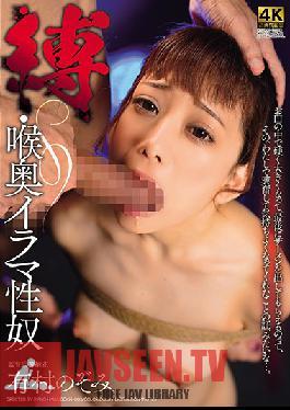 DDKH-003 Bondage Deep Throat Face Fucking Nozomi Arimura