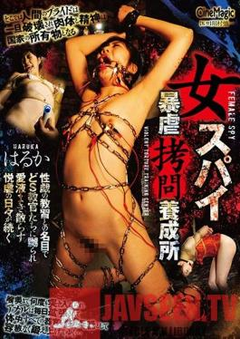 CMC-247 Female Spies Rough Bondage Training Center - Haruka