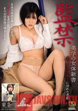 DDHH-025 Confinement: New Book On The Aesthetics Of The Female Body - Aoi Tojo