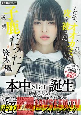 HMN-049 This Kid Was A Fawn (sensitive) With The Skin Of A Wolf (lewd)! Honnaka Star Birth All Day Super Pursuit Piston Cum Shot Sexual Intercourse That Collapses A Sensitive Beautiful Girl Like A Newborn Fawn Kaede Hiiragi